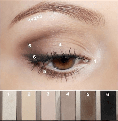5 Step To Create light brown Eyeshadow Look
