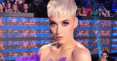 Katy Perry's American Idol Finale Purple Hair And Eyeshadow Makeup Look